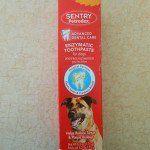 Le meilleur dentifrice pour chien pour le toilettage