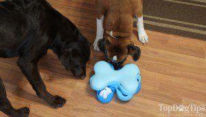 Nina Ottosson Puzzle Jouets pour chiens
