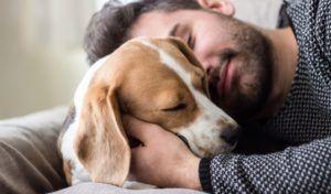 La science derrière l`ocytocine et l`amour chiot