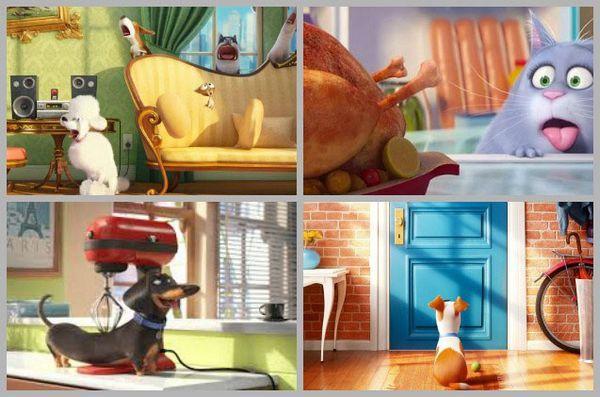 Le secret est sorti! Une nouvelle bande annonce de film d`animation révèle «la vie secrète des animaux de compagnie» [vidéo]