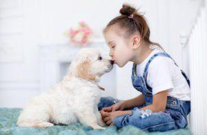 Le guide ultime pour élever des enfants avec des chiens: 17 choses que chaque parent devrait savoir