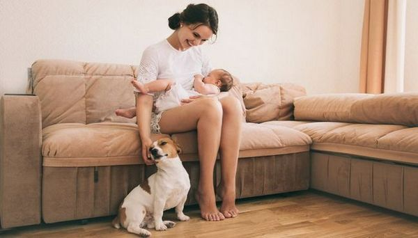 Le guide ultime pour élever des enfants avec des chiens