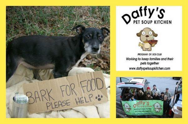 «C'est la saison des dons - la soupe pour animaux de compagnie de Daffy aide les animaux dans le besoin