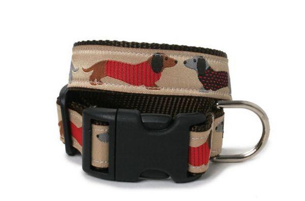 Le collier de chien pull gardera votre chiot` /><strong>6. </strong><a href=