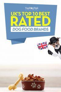 Top 10 des meilleures marques d`aliments pour chiens au Royaume-Uni selon les critères et choisis par les propriétaires d`animaux