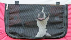Choisir les meilleures caisses pour chien doux