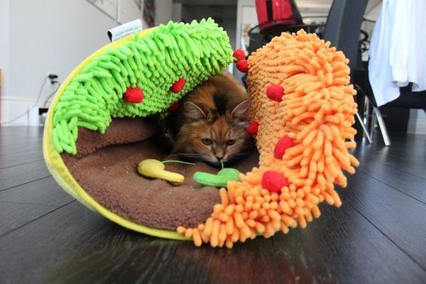 Meowy Catmas Cadeaux pour les chats et les fans de félins: Taco Meoow
