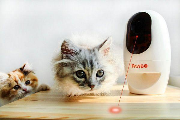 Meowy Catmas Cadeaux pour les chats et les fans de félins: Pawbo