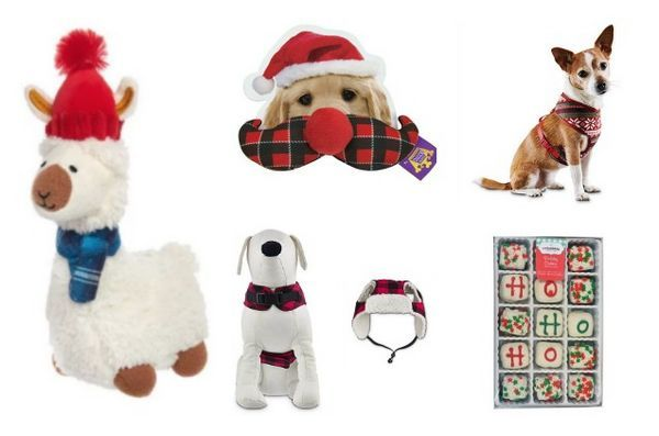 Top 10 des bas de Noël spectaculaires pour chiens