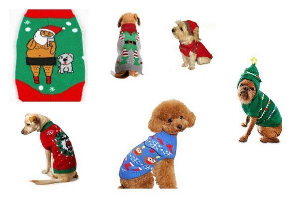 Top 10 splendides chandails pour animaux de compagnie de Noël