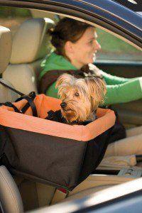 Pourquoi quelqu`un devrait-il acheter des sièges d`auto pour chiens?