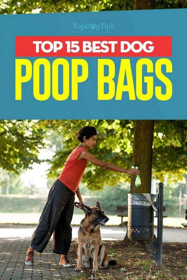 Les meilleurs sacs de caca pour chien