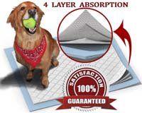 Pads pour chiots XL pour chiens d`entraînement à l`intérieur