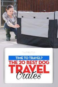 Top 20 meilleures caisses de voyage pour chiens