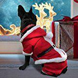 Costume de Noël pour chien Pet Leso's Dog