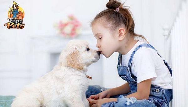 Top 34: comment les enfants et les chiens s`entraident