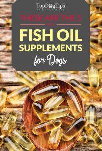 Top 5 des meilleures huiles de poisson pour les suppléments de chiens