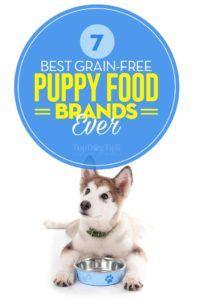 Les meilleures marques d`aliments pour chiots sans céréales