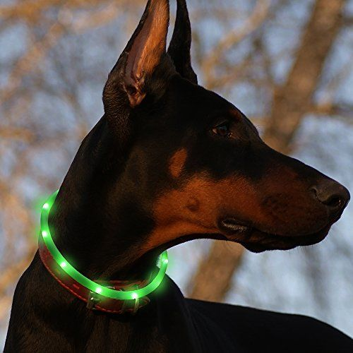 Collier de chien à lumière individuelle BSeen LED