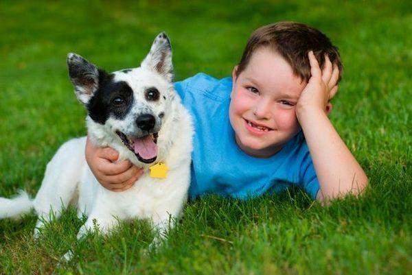 Top 7 des raisons pour lesquelles votre enfant a besoin d`un animal de compagnie