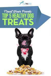Top 9 des meilleures friandises pour chiens