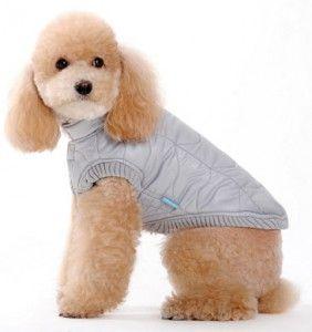 dogo-urban-bubble-jacket
