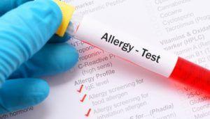 Test des allergies hivernales chez les chiens