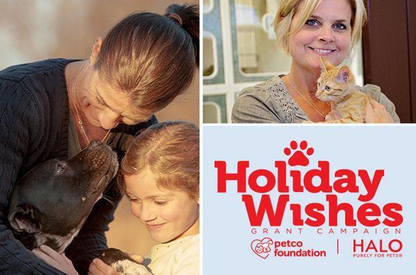 Les souhaits se réalisent grâce à la campagne de vœux de la fondation petco