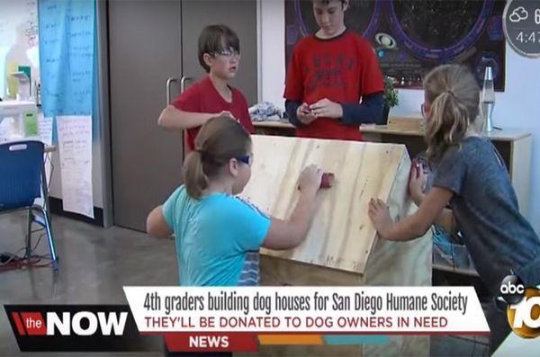 De jeunes étudiants construisent des niches pour les chiots sans abri